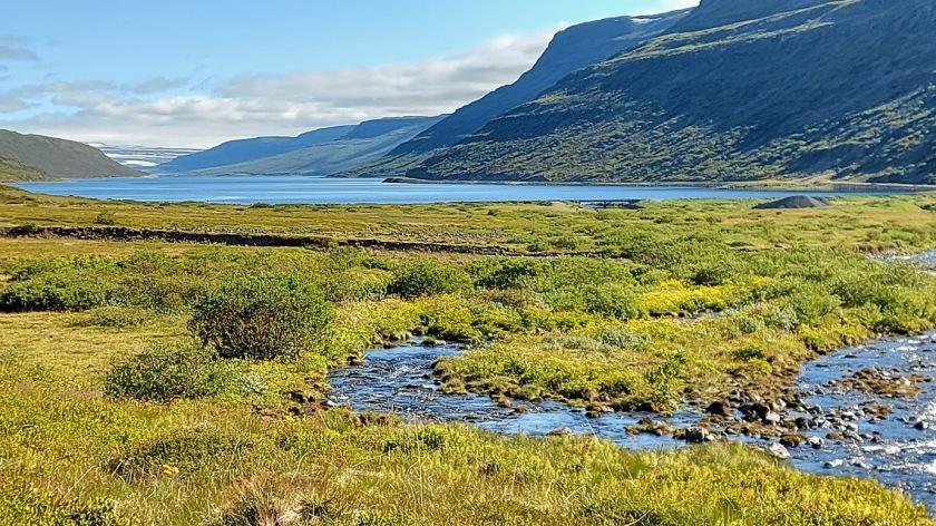 Í Hestfjarðarbotni
